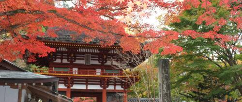 Murou-ji / 室生寺