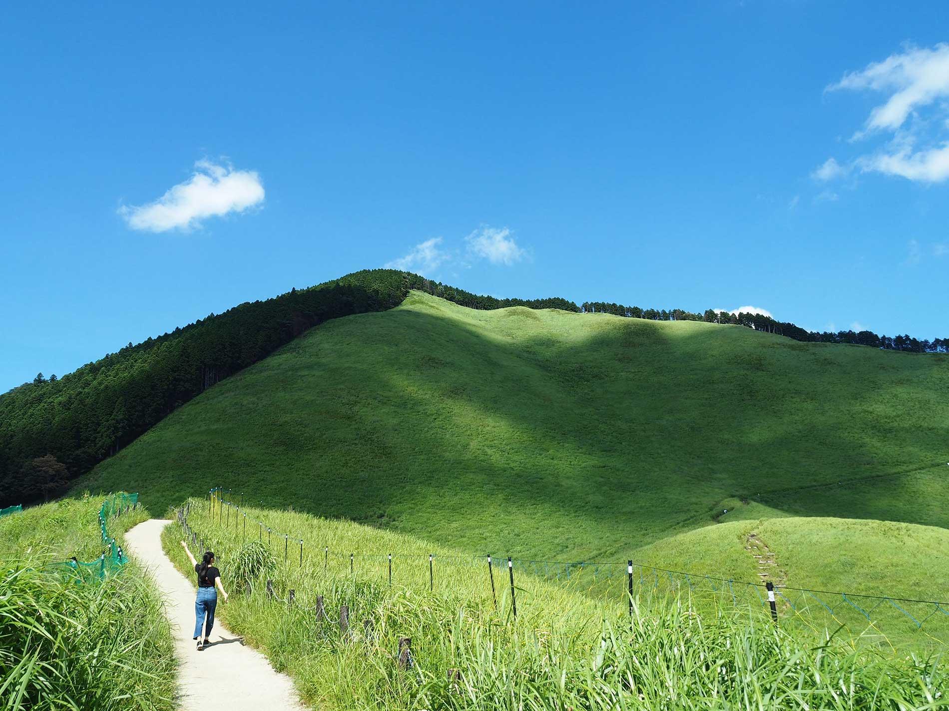 Soni Highland in summer / 夏の曽爾高原