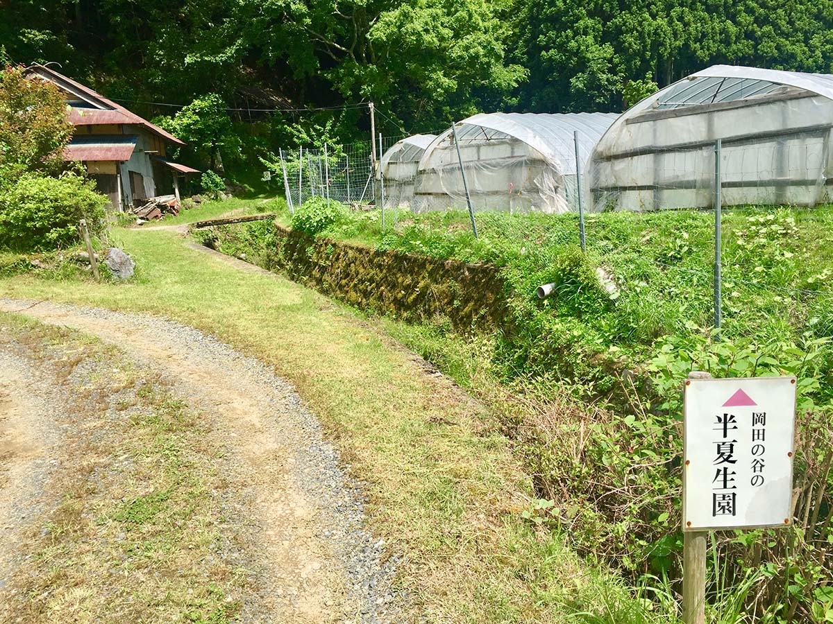 Sign of Lizard's Tail Garden / 半夏生園の看板