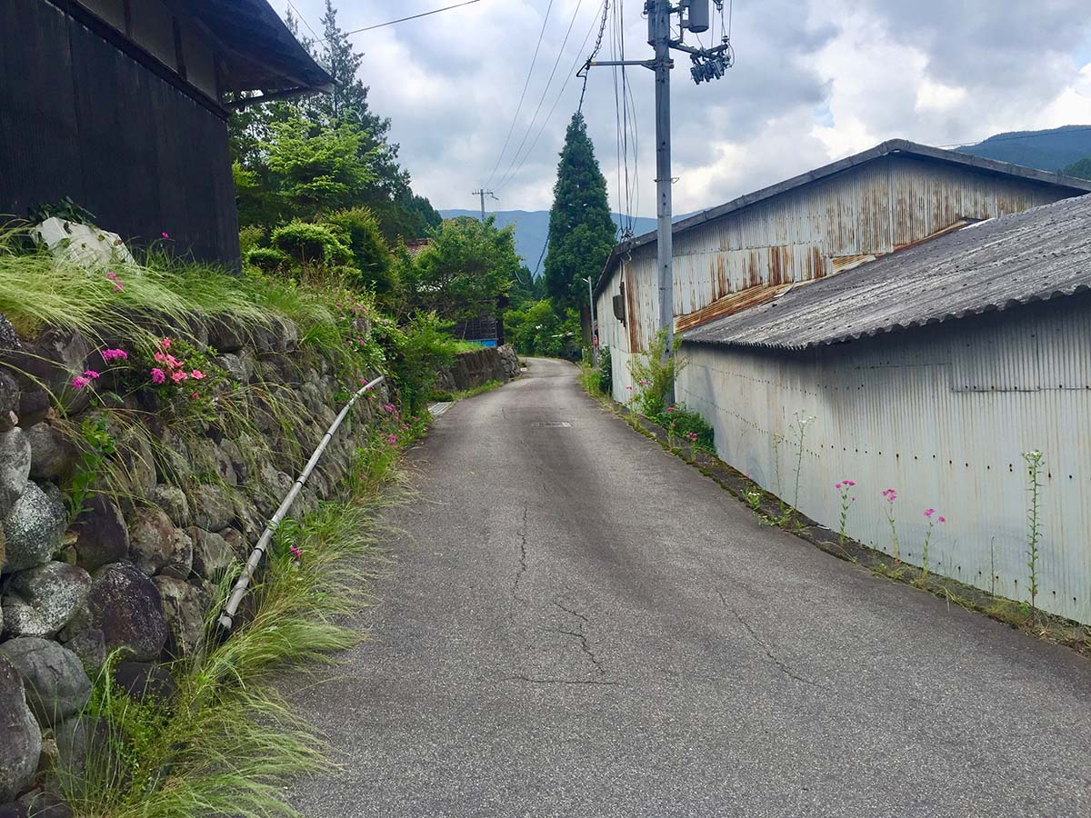 Path leading to the garden / 半夏生園に続く道