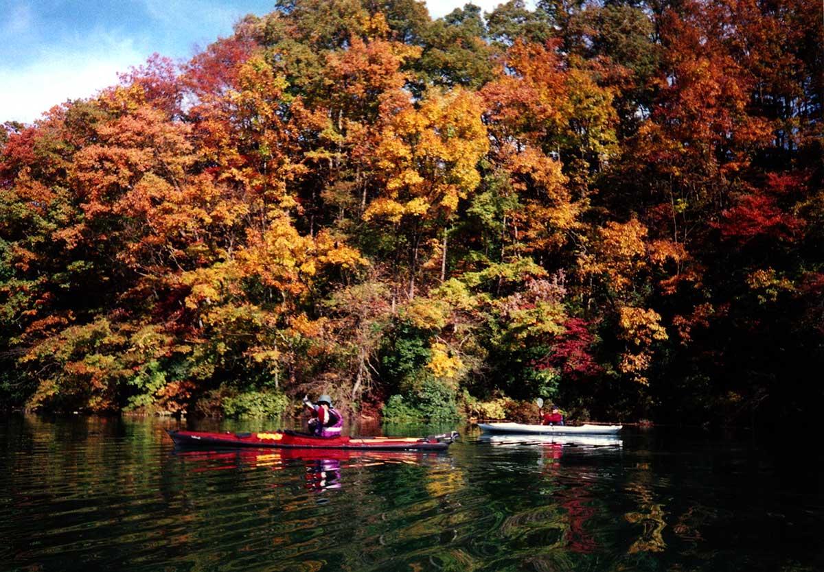 Autumn leaves at Shorenji Lake / 青蓮寺湖の紅葉