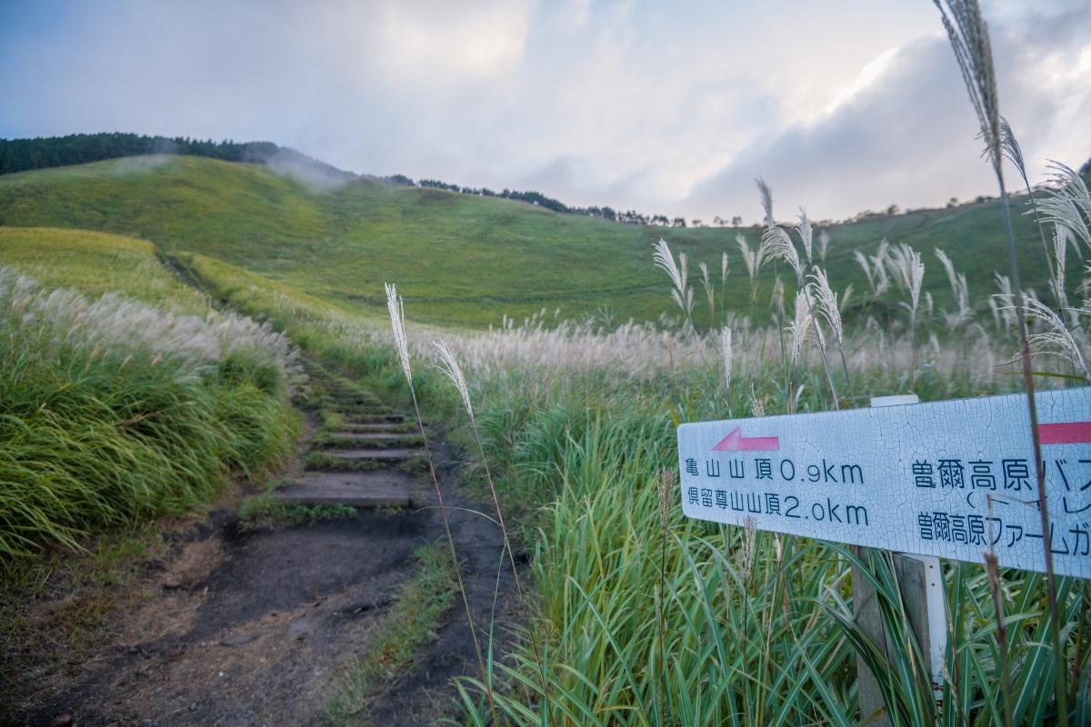 A path through the plateau