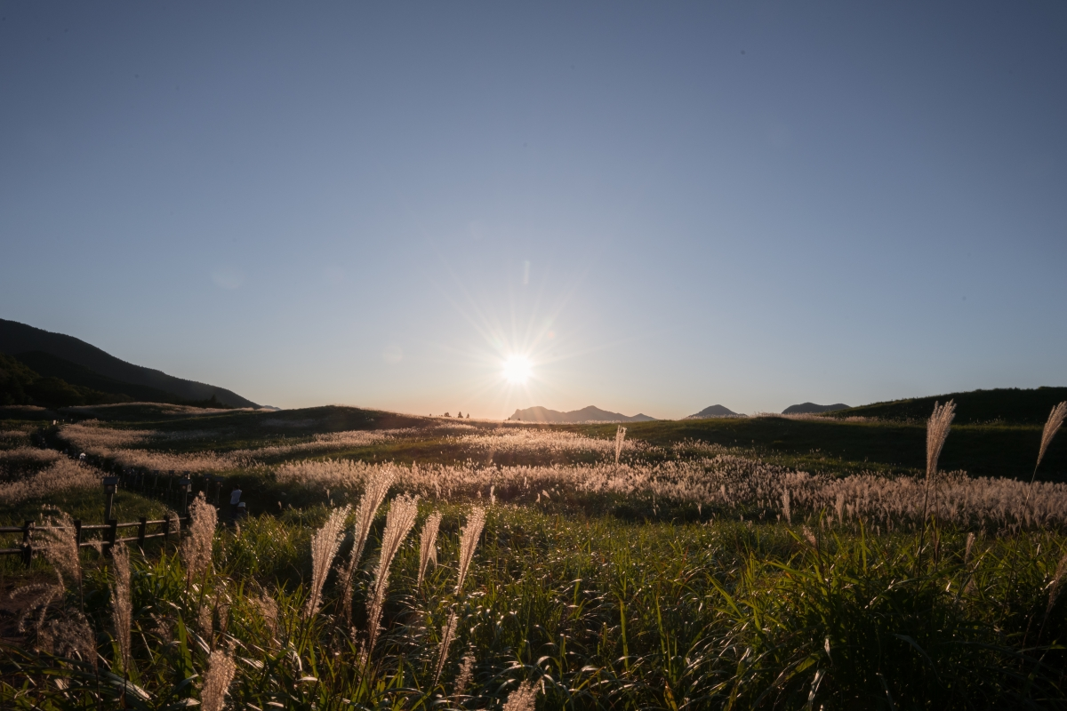 Soni Highland at dusk