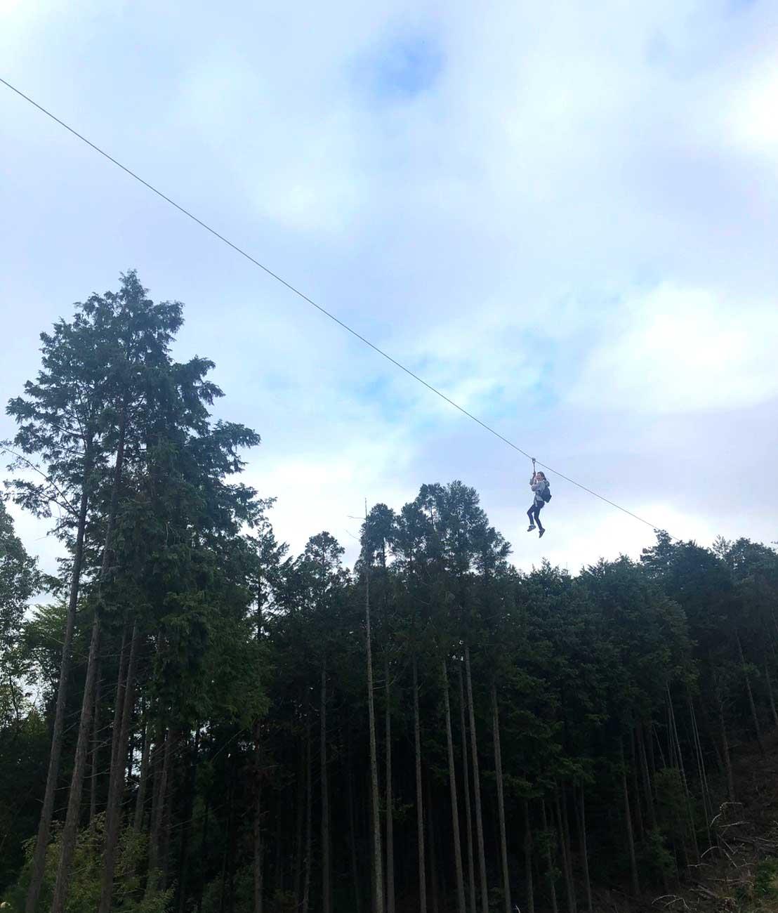 Boken no Mori / 冒険の森