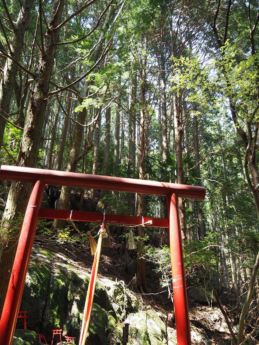 Torii gate at Himeshi Myojin / 姫石明神の鳥居