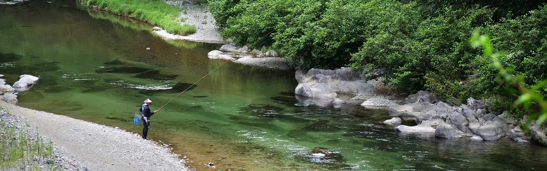 Sweetfish 'Ayu' Fishing