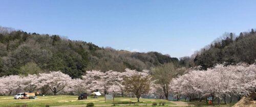 Country Park Oko