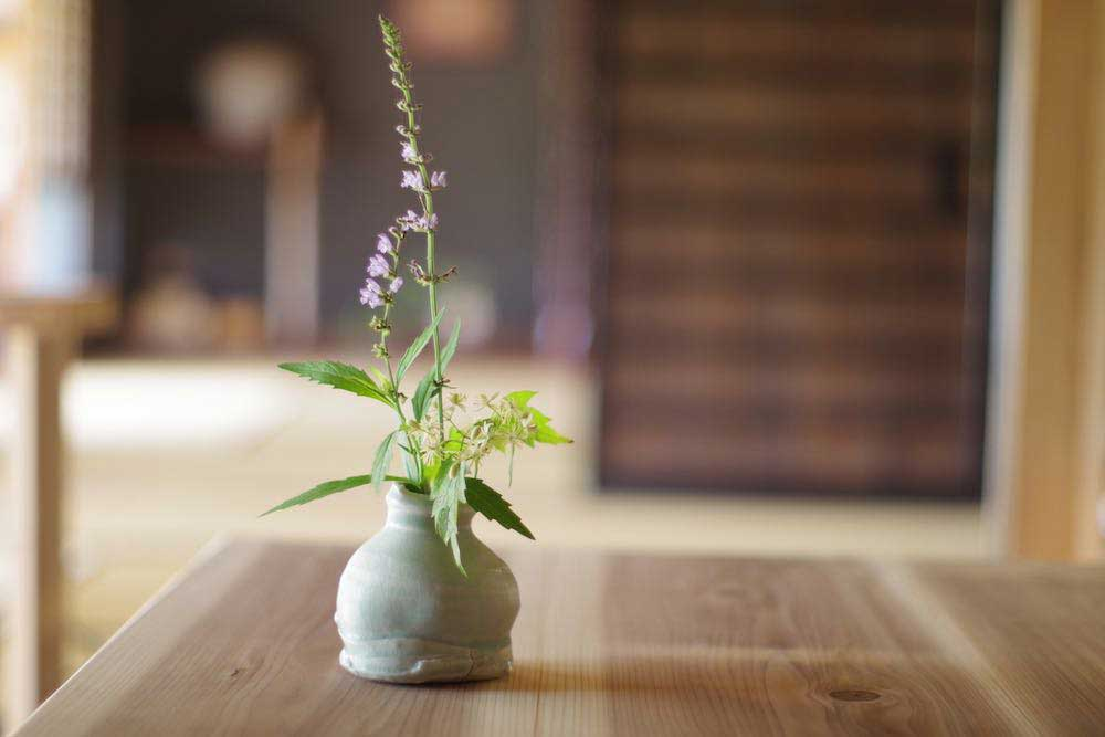 Vase / 花器