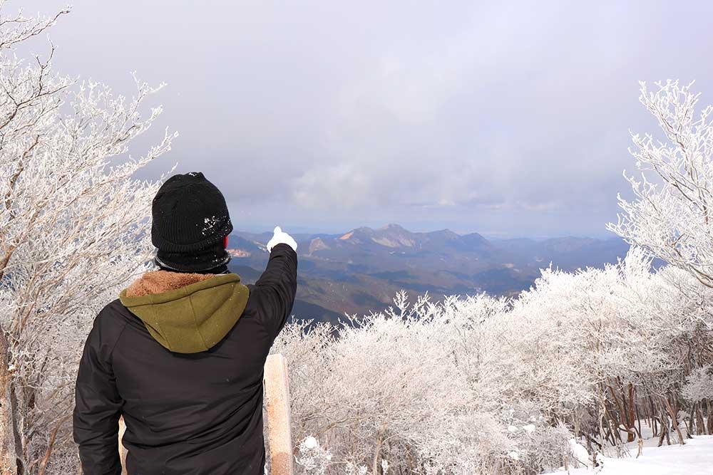 三峰山の霧氷 / Rime ice on Mt. Miune
