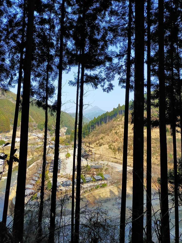 Mountain road in Higashiyoshino / 東吉野村の山道